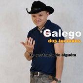 To Gostando de Alguém von Galego dos Teclados