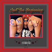 Just The Beginning by C-Way