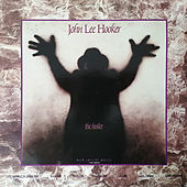 The Healer de John Lee Hooker