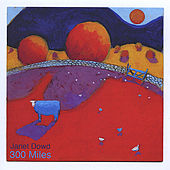 300 Miles by Janet Dowd