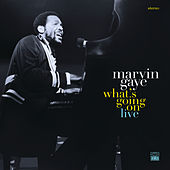 What's Going On / Wholy Holy de Marvin Gaye