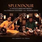 Splendour by Purbayan Chatterjee