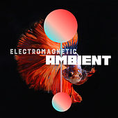 Electromagnetic Ambient by Various Artists