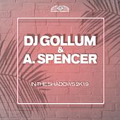 In the Shadows 2k19 by DJ Gollum