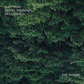 The Woods von Alex Haas