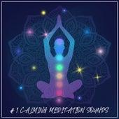 # 1 Calming Meditation Sounds von Yoga Music
