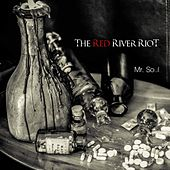 Mr. Soul by The Red River Riot
