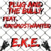 Plug And The Bully de EKe