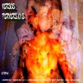 Versos PerverS.O.S de El Tunche