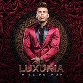 #Elpatron by Luxúria