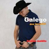 Destino Maldito von Galego dos Teclados