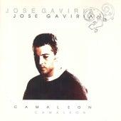 Camaleón by José Gaviria