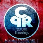 Minimal Session, Vol. 1 von Various