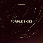 Purple Skies (Shiny House Stars), Vol. 1 by Various Artists