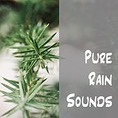 Pure Rain Sounds by Rain Sounds (2)