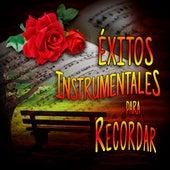 Exitos Instrumentales para recordar by Orquesta Instrumental Latinoamericana