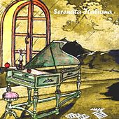 Serenata italiana, Vol. 12 by Various Artists