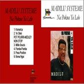 Na Pokwa Ya Lelo by Madilu System