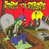 Storm in the Garage von Various Artists