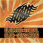 Electro Tribal Club Sensation de Various Artists