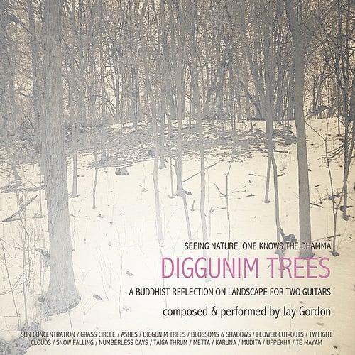 Diggunim Trees by Jay Gordon