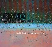 Natural Selection by Rez Abbasi