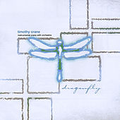 Dragonfly by Timothy Crane