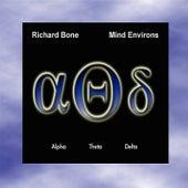 Mind Environs by Richard Bone