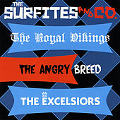 The Surfites & Co. by The Surfites