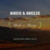 Birds & Breeze - Nature Music Series, Vol.24 von Ambient 11