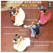 Bruno Walter Conducts Strauss de Bruno Walter