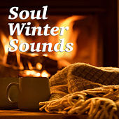 Soul Winter Sounds de Various Artists