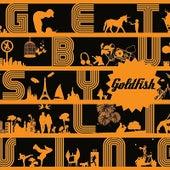 Get busy living de Goldfish