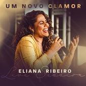 Um Novo Clamor de Eliana Ribeiro