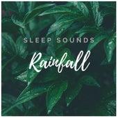 Rainfall Sleep: Ocean Waves, Sea and Rain Sounds for Baby Sleep by ASMR Nature Rain Sleep