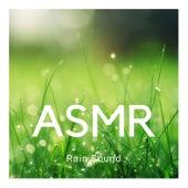 #ASMR: Rain under Umbrella, Rainfall and Water Stream Sounds for Sleep by Rain Sounds (2)