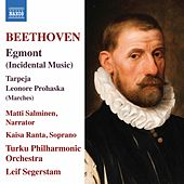 Beethoven: Works by Turku Philharmonic Orchestra