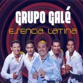 Esencia Latina de Grupo Gale