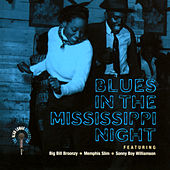 Blues In The Mississippi Night - The Alan Lomax Collection by Various Artists