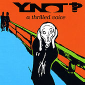 A Thrilled Voice by YNOT