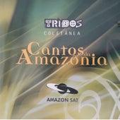 Cantos da Amazônia - Tribos Coletânea de Vários Artistas