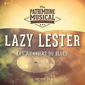 Les pionniers du Blues, Vol. 18 : Lazy Lester by Lazy Lester