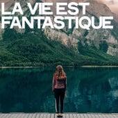 La Vie Est Fantastique by Various Artists