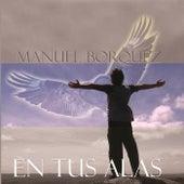 En Tus Alas de Manuel Bórquez Inzunza