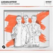 Perfect (feat. Haris) von Lucas & Steve