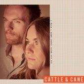I Wish I Knew Jesus (Like You Do) by Cattle & Cane