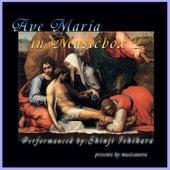 Shinji Ishihara: Ave Maria in Musicbox2 (Musicalbox) de Shinji Ishihara
