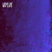 Love Of My Life von Doug Panton