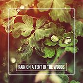 Rain On A Tent In The Woods von Sleep Sounds of Nature