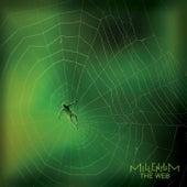 The Web von millenium